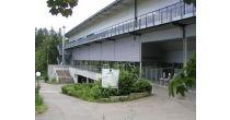 Kolping-Arena