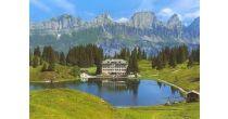 Hinauf zur Alp