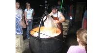 Visite d'une fromagerie alpestre.