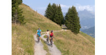 Discover our great biking areas with a guide.