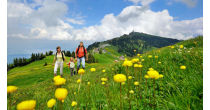Guided walk on Mount Rigi