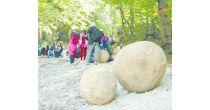 Kinder auf dem Holzweg: Ritterleben am Augstbach