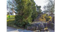 Archäologisch-historische Führung durch Bad Zurzach