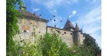 Von Kröten-, Schanzen- & Vorgärten zum Apéro im Beizengarten