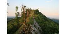 Eine Gratwanderung – von Baden nach Regensberg über die Lägern