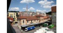 Öffentliche Führung: Mühlen und frühe Industrie an der Eulach
