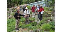 Les vendredis de Flore-Alpe - Visites guidées