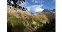 Excursion guidée Val Trupchun