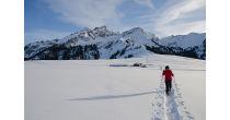 Chemin des armaillis et neige
