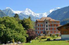 Berghof Amaranth, Hotel