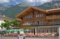 Steinbock, Hotel