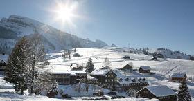 Alpenrose meets Gade