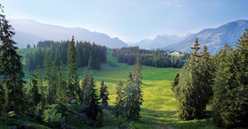 Visit the UNESCO Biosphere Entlebuch.