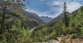 100 anni di Parco nazionale svizzero