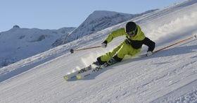 Etoile des neiges Lenk-Simmental