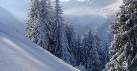 Schneeschuherlebnis Grimmialp