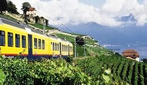 Der Zug durch die Reben, Lavaux