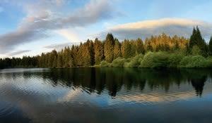 Étang de la Gruère nature sanctuary